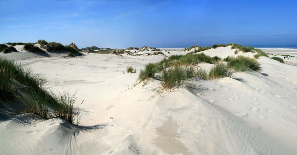 strand Oosterend 5